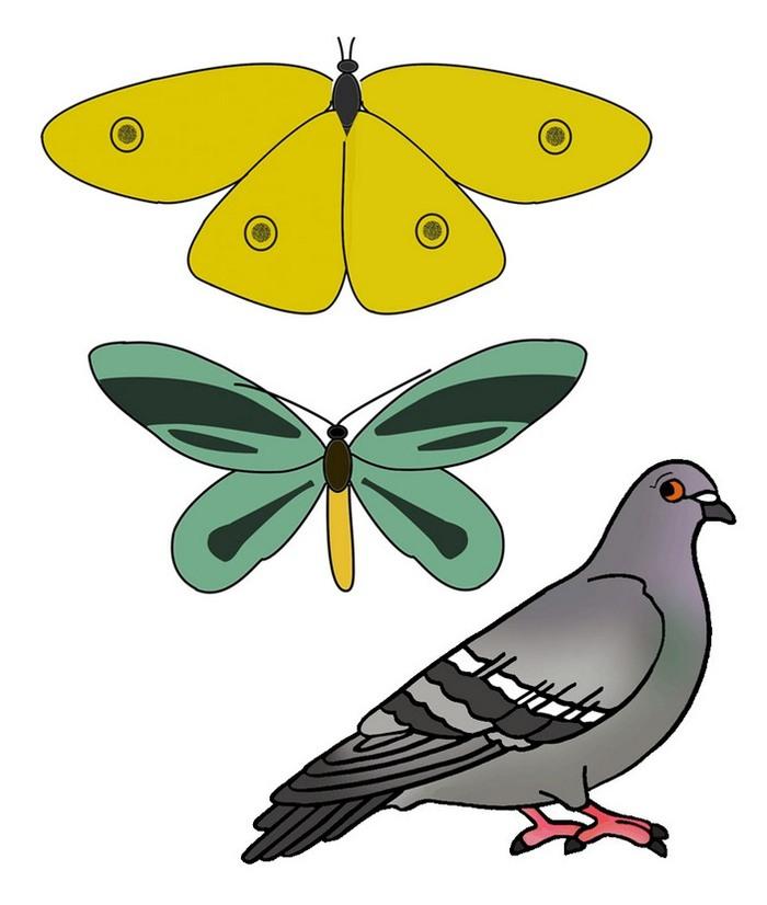 «Бабочки» мезозоя Палеонтология, эволюция, насекомые, конвергенция, Интересное, наука, длиннопост