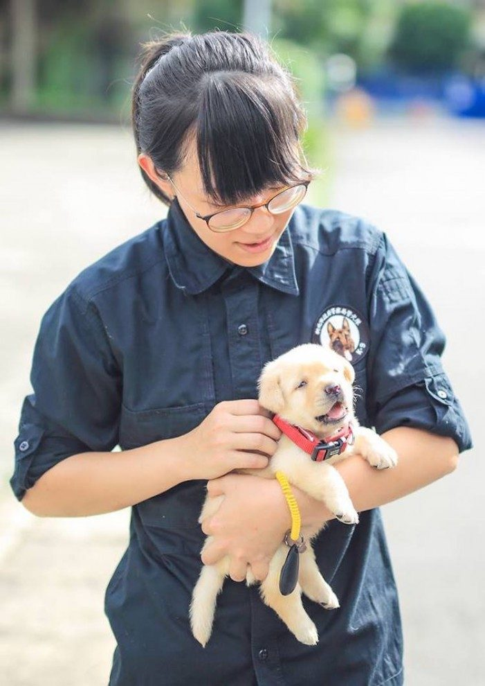 Полиция Тайваня пополнились шестью новыми сотрудниками