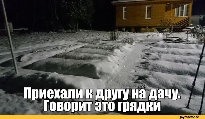 Нужно ли убирать снег с грядок
