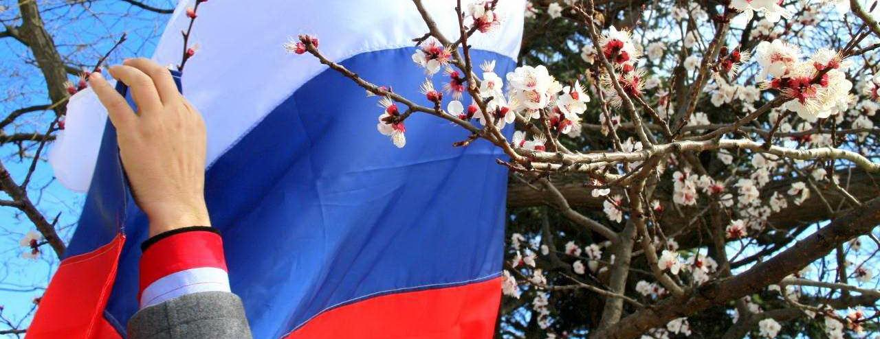 Житомирщина готова встречать Россию триколорами – Бабин