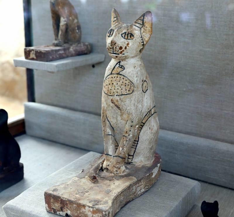 В Египте нашли редкие мумии кошек и скарабеев в 7 гробницах возле пирамид Египт, в мире, гробницы, кошки, мумия, находка, пирамиды