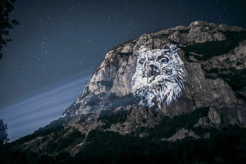 5. Филин горы, животные, исчезновение, рисунки, спасение, художник