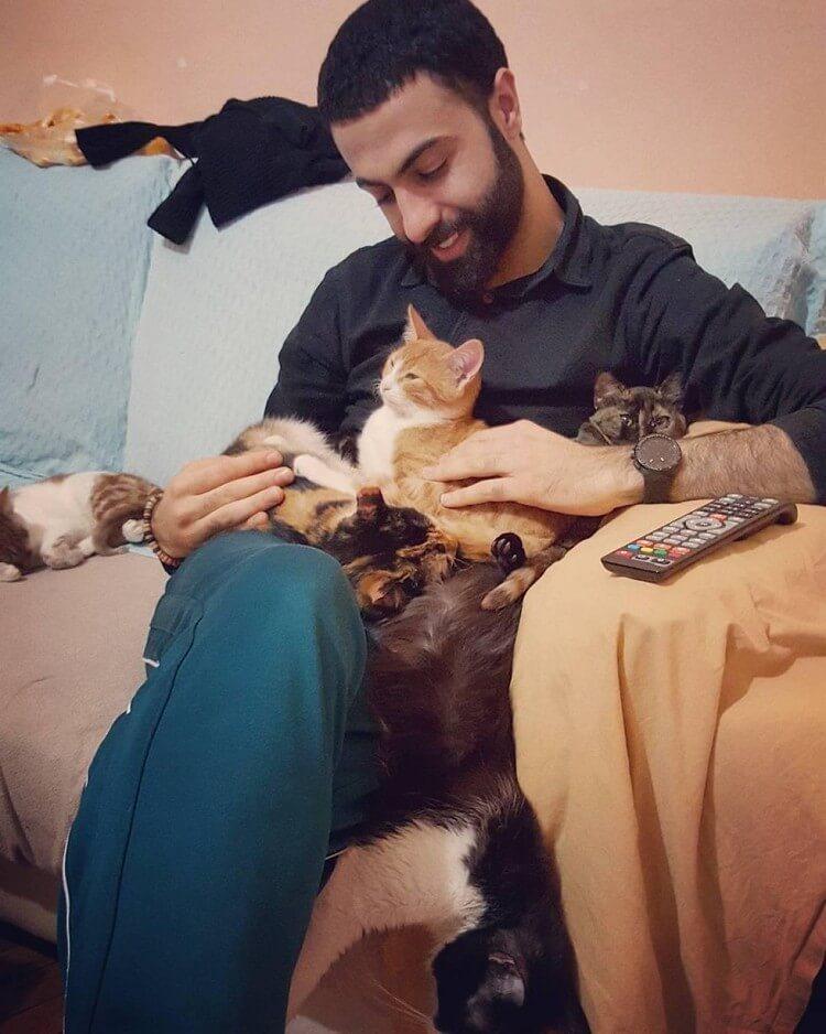 Мужчина спас девятерых кошек, и теперь по ночам они приходят его благодарить! кошки