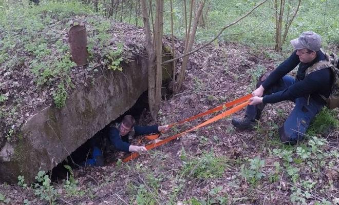 Тайна бункера в лесу: черные копатели обнаружили, что рядом замаскирован склад