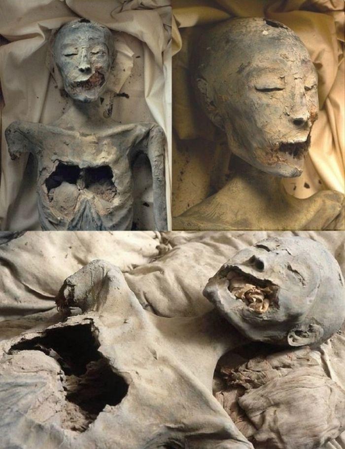 Красота царицы Нефертити. Миф или реальность? Нефертити, древний египет, история, тайна