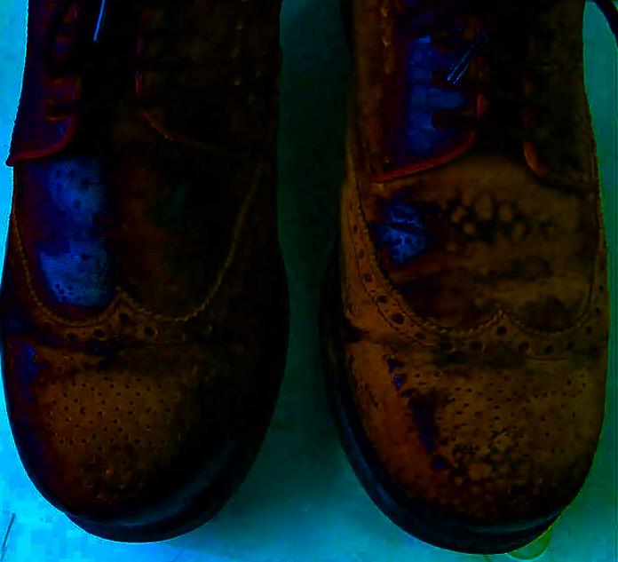 Картинки по запросу Чистая и восстановленная кожаная обувь