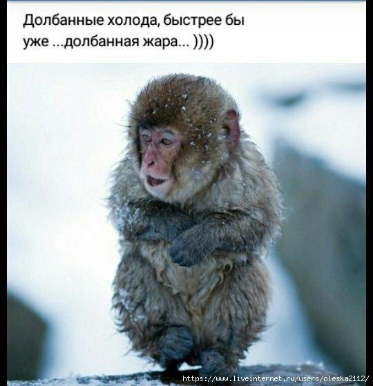 Утренние размышления... :-)))