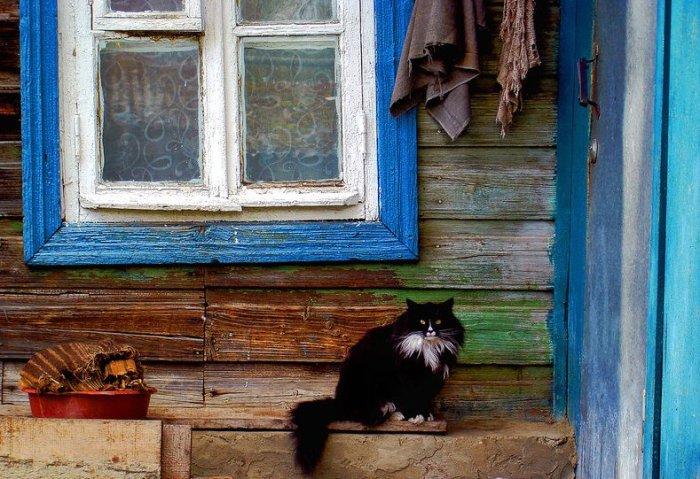 Многие столетия люди испытывали страх перед сглазом, порчей и различными суевериями / Фото: twitter.com
