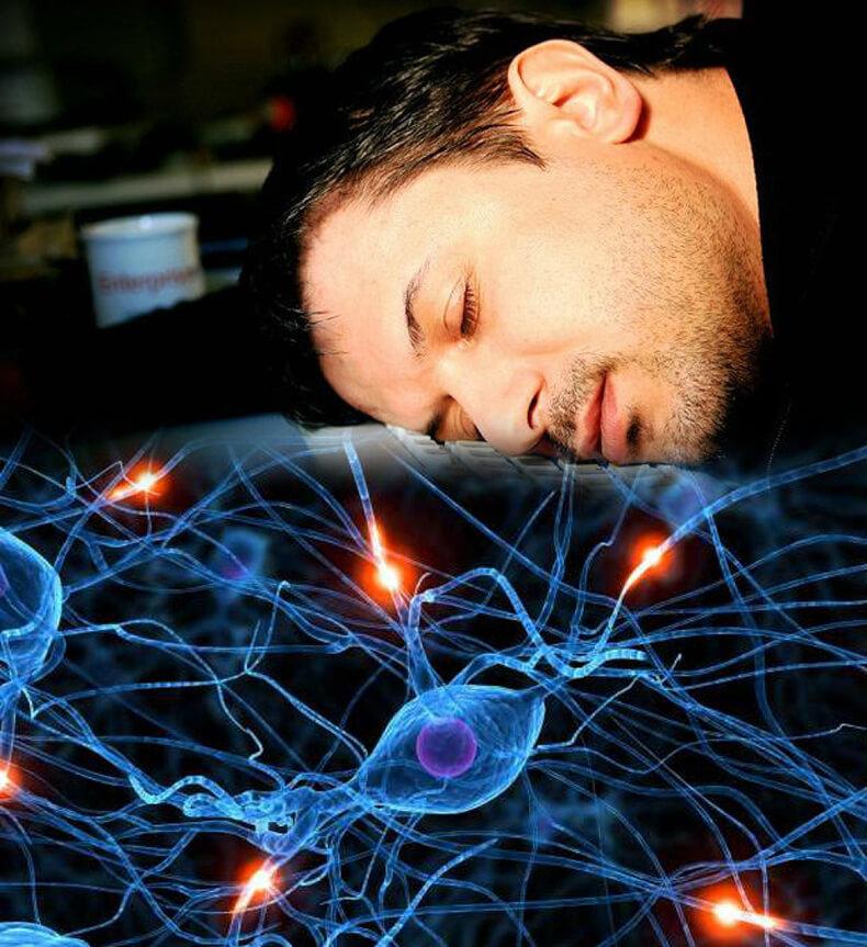 Спать нужно не менее 8 часов врачи постоянно твердят, что для здоровья нам необходим полноценный 8-часовой сон.