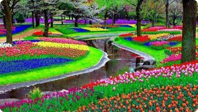Кёкенхоф – королевский парк цветов