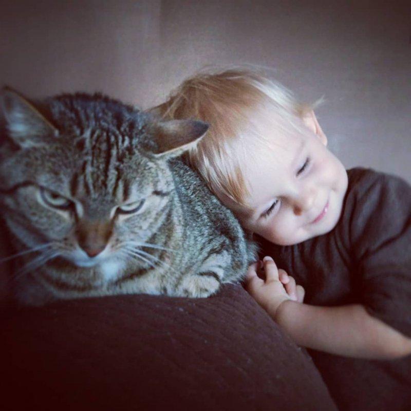 Ладно уж, полежи на мне... дети, дружба, животные, кошки, ребенок, собаки