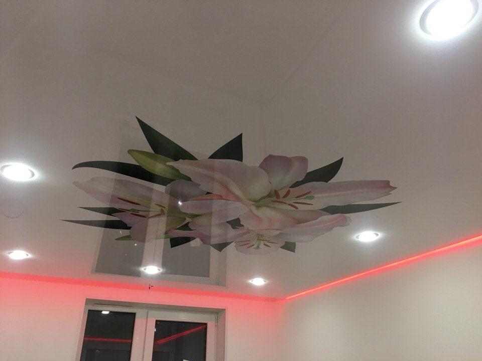 Парящий потолок: разновидности конструкций, форм, цвета, идеи дизайна в интерьере-3