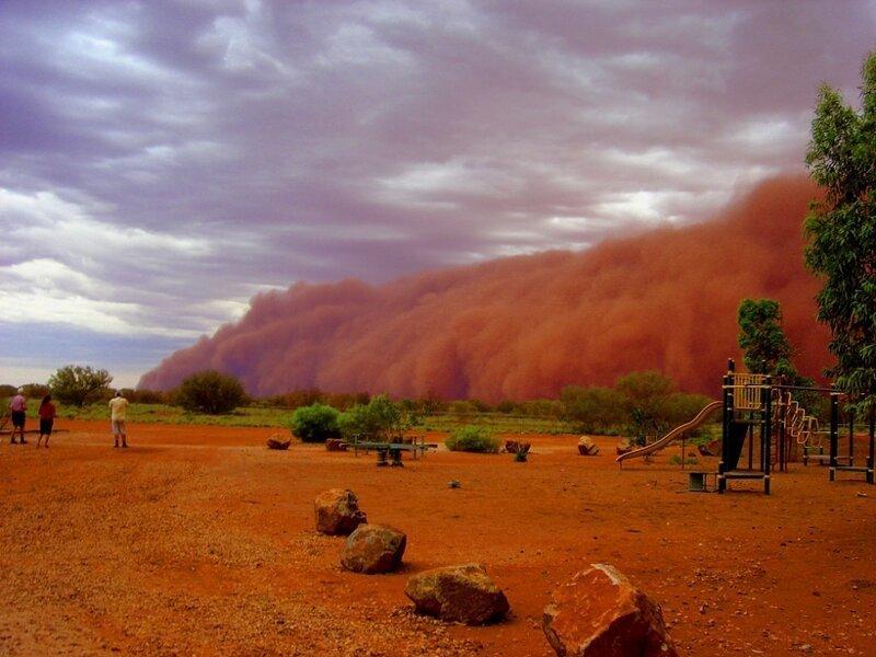 Песчаная буря... катаклизмы, природа, растительность