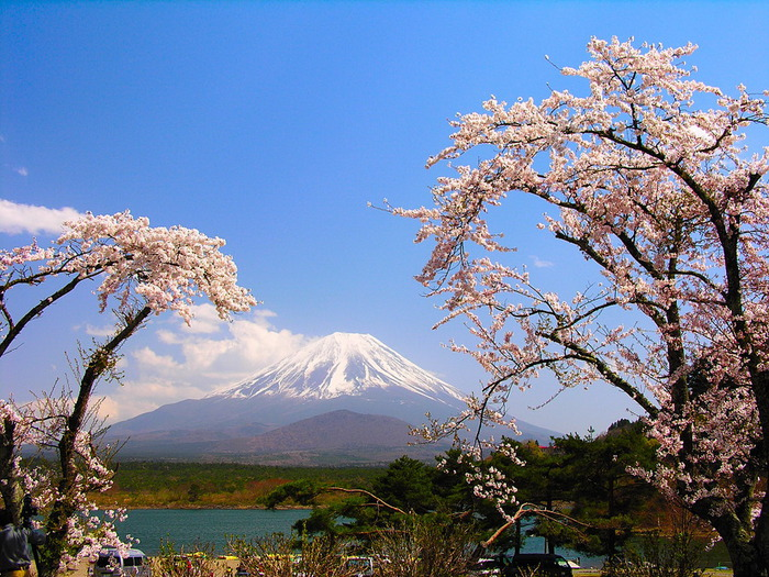 Японская йога - путь единства сознания и тела. (Часть-2)