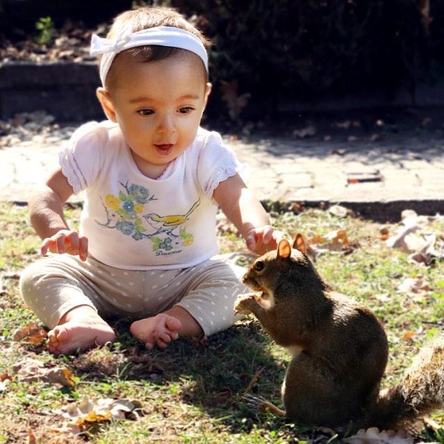 Л - любопытство. дети, дружба, животные, кошки, ребенок, собаки