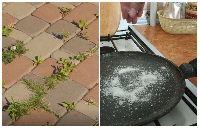 Как избавиться от сорняков и бороться со стреляющим маслом: 12 секретов поваренной соли