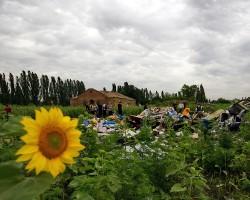 Минобороны: Маршрут полета Boeing попадал в зону двух зенитных батарей Украины