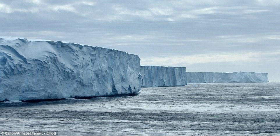 Как выглядят самые древние в мире айсберги интересное,природа