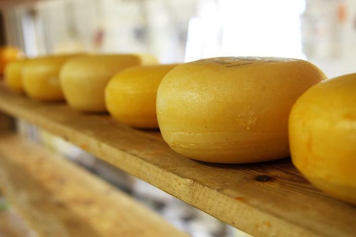 История сыра насчитывает несколько тысячелетий