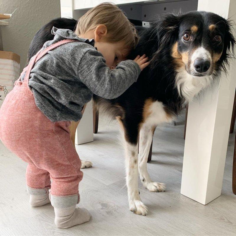 Хорошо, когда всегда можно пожаловаться на жизнь другу. дети, дружба, животные, кошки, ребенок, собаки