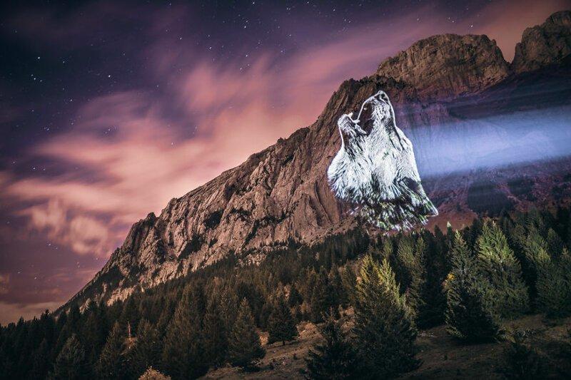 1. Кричащий волк горы, животные, исчезновение, рисунки, спасение, художник