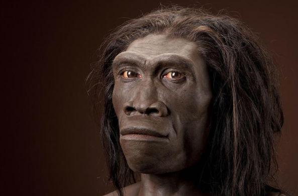 Ученый: речь появилась раньше, чем Homo sapiens