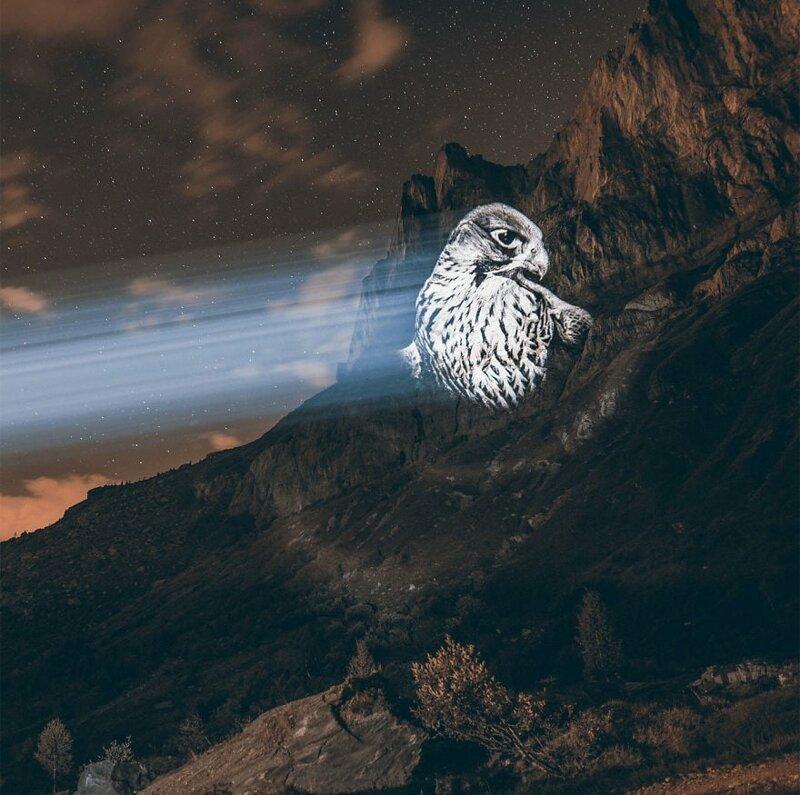 15. Бурый ястреб горы, животные, исчезновение, рисунки, спасение, художник