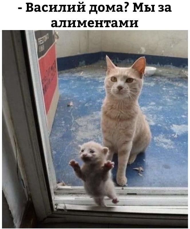 Ситуация из жизни :-)