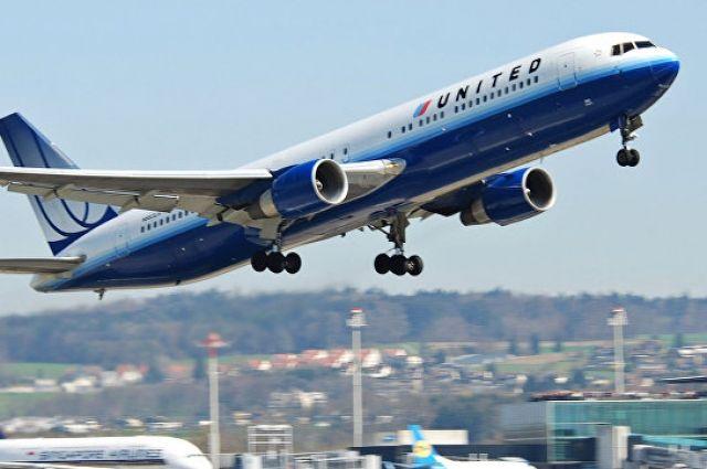 В США посадили самолет из-за случайно попавшей на борт собаки