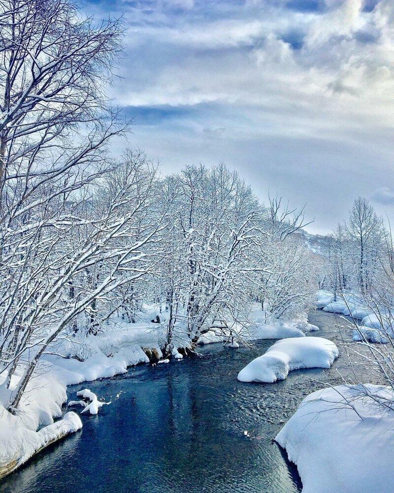 Снежное королевство, Камчатка, Россия катаклизмы, природа, растительность