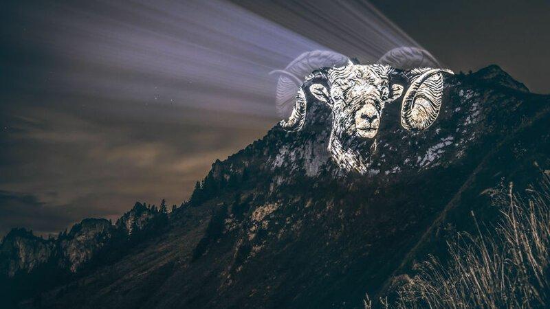 3. Горный козёл горы, животные, исчезновение, рисунки, спасение, художник