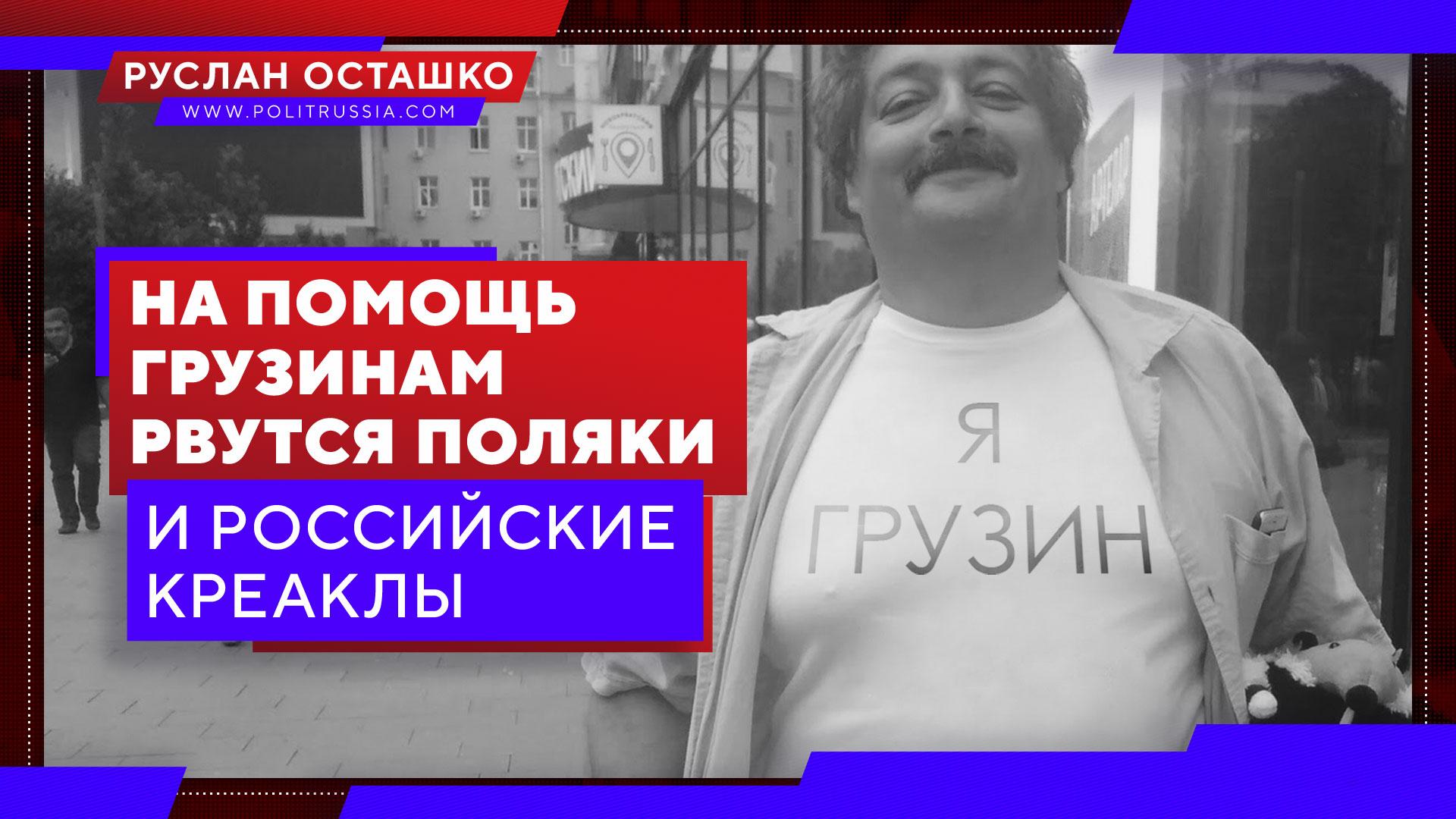 На помощь грузинам рвутся поляки и российские креаклы