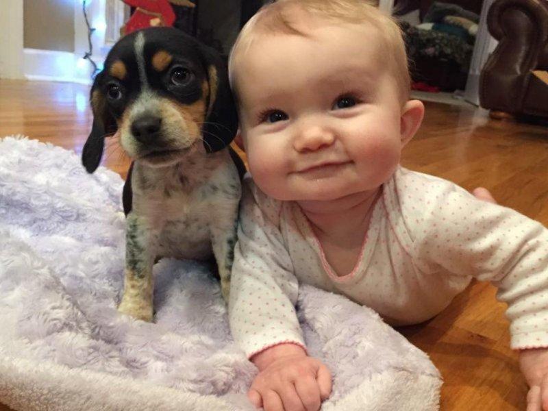 20 милых фото, показывающих, что значит дружба между детьми и животными