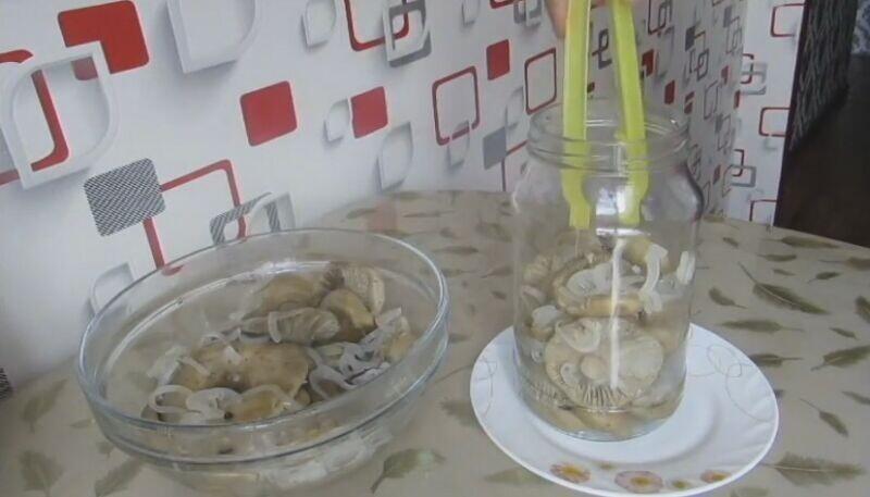 Как правильно солить грузди на зиму в домашних условиях холодным и горячим способом заготовки,солим и квасим