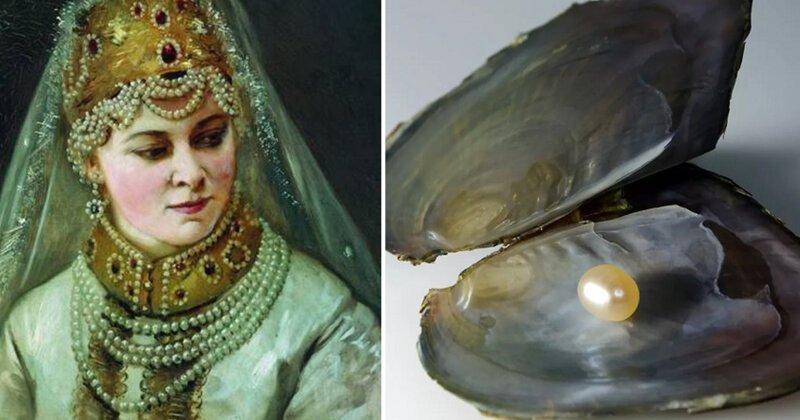 Трагичная история разбазаривания жемчуга на Руси добыча жемчуга, драгоценности, жемчуг, история, исчезновение, русь