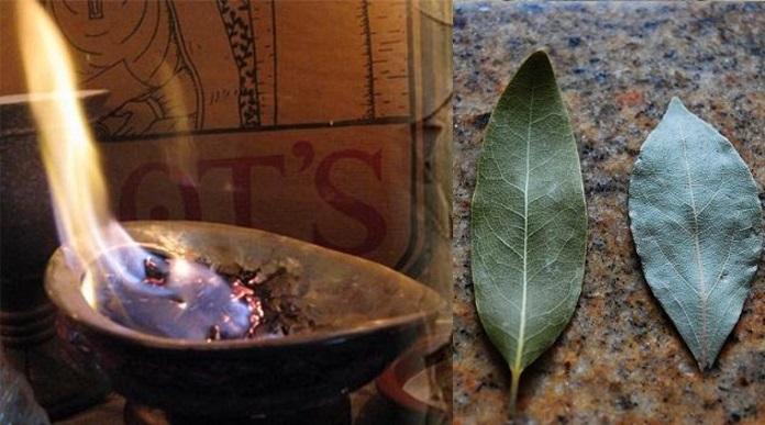 Подожгите лавровый лист в своем доме
