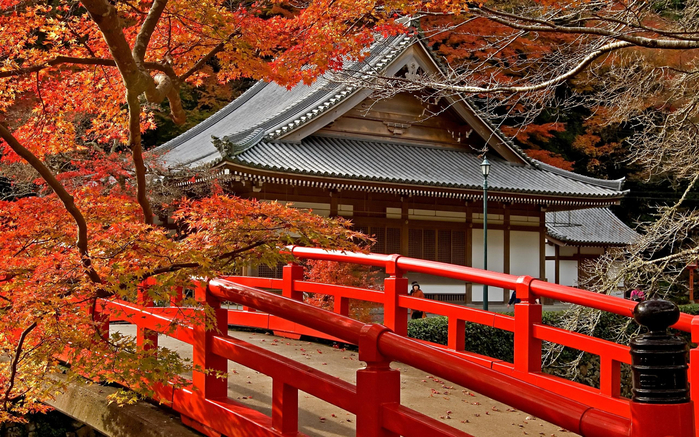 _beautiful_autumn_in_japan-1573609 (800x537, 542Kb)