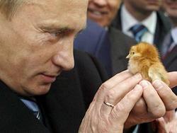В жестах Путина разглядели агрессию и презрение к США