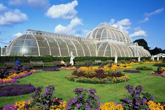 Королевские ботанические сады Кью1