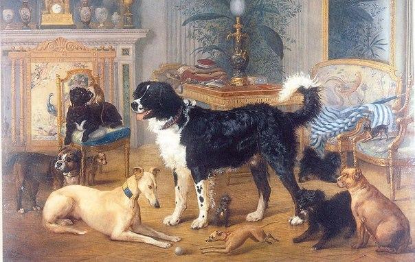 Комнатные собаки императоров.