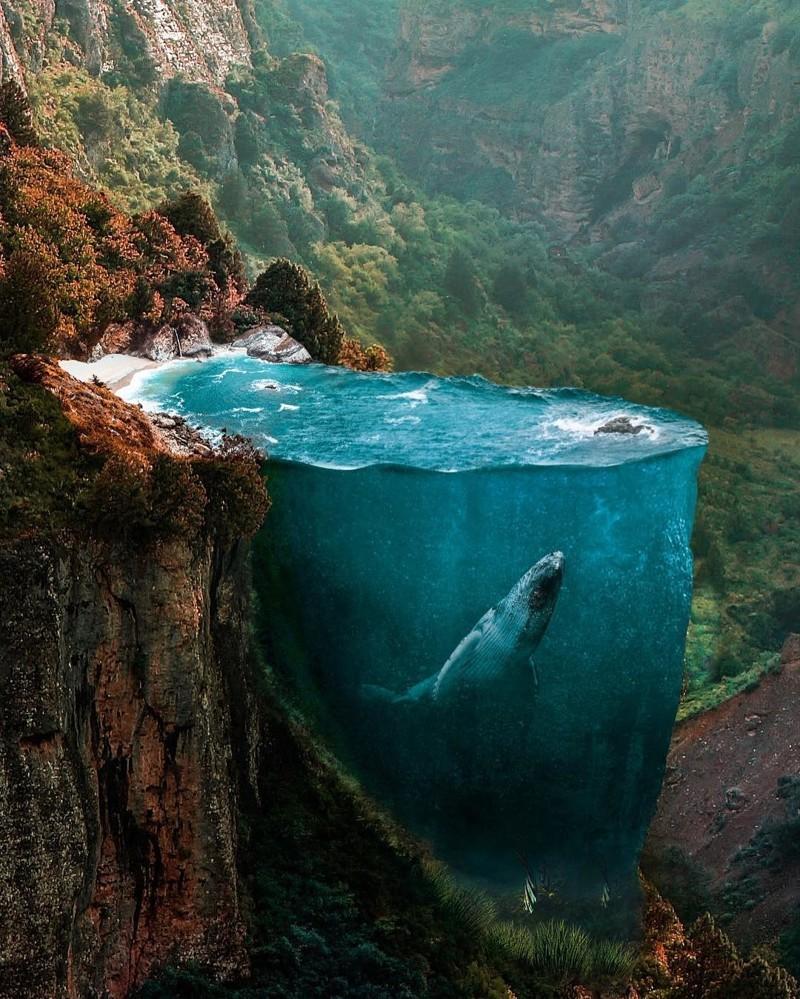Самые необычные и красивые картинки в мире