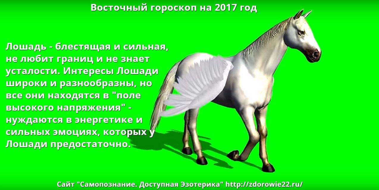 поздравление кто рожден в год лошади начал понимать, что