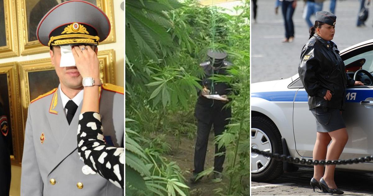 «Наша милиция - нас бережет»: забавные ситуации с представителями правопорядка