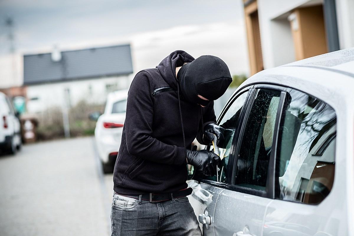 представлены все фото краж из автомобилей аллей засажена липами