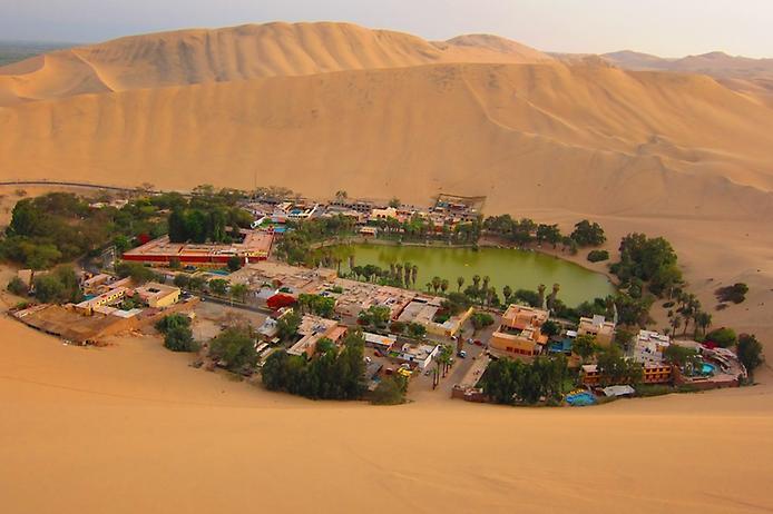 Оазис среди пустыни.