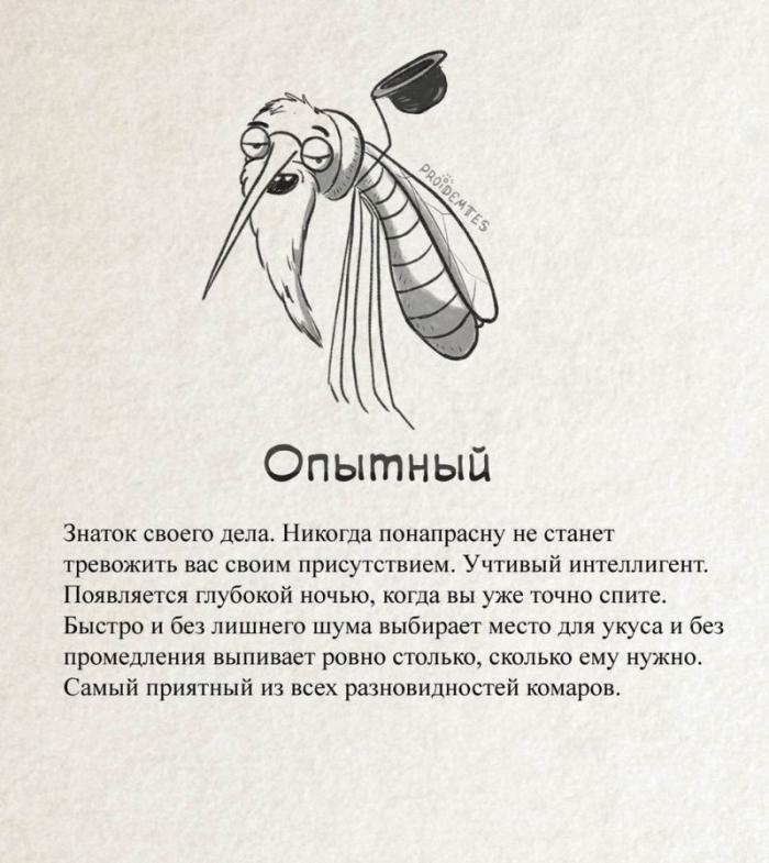 Тролль, ниндзя, берсерк точная классификация комаров
