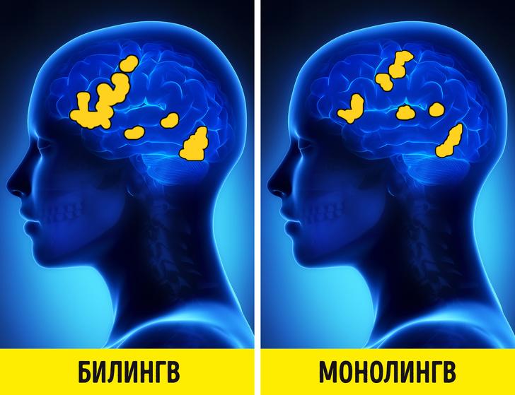 У меня два родных языка с детства, и это не так здорово, как многие привыкли думать