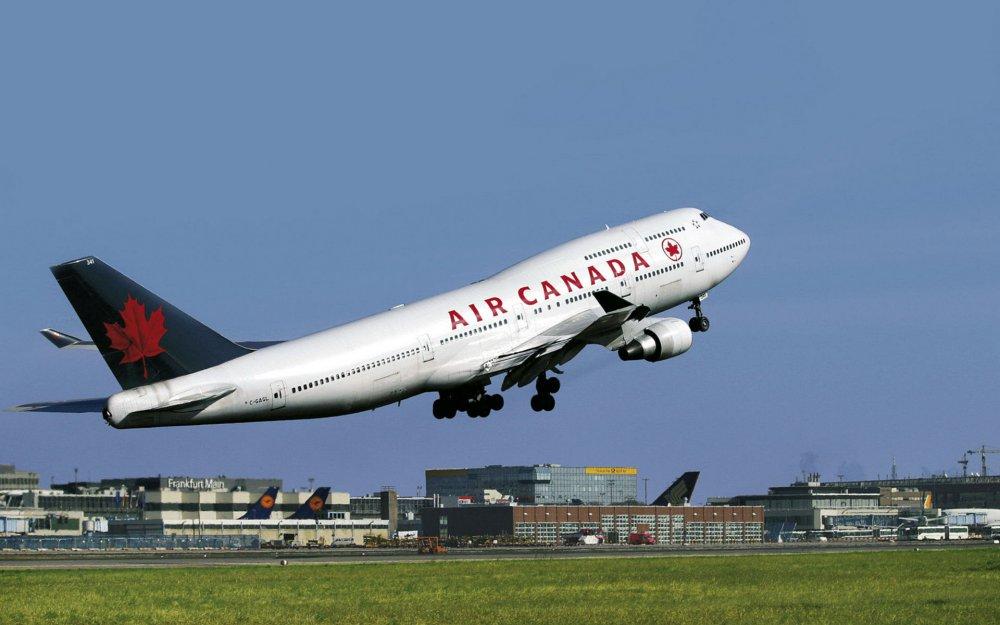Самолет Air Canada прервал рейс ради спасения жизни собаки