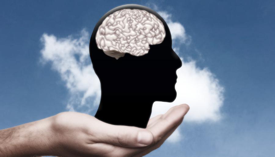 Гигиена для мозга: 5 способов поддерживать интеллект в форме