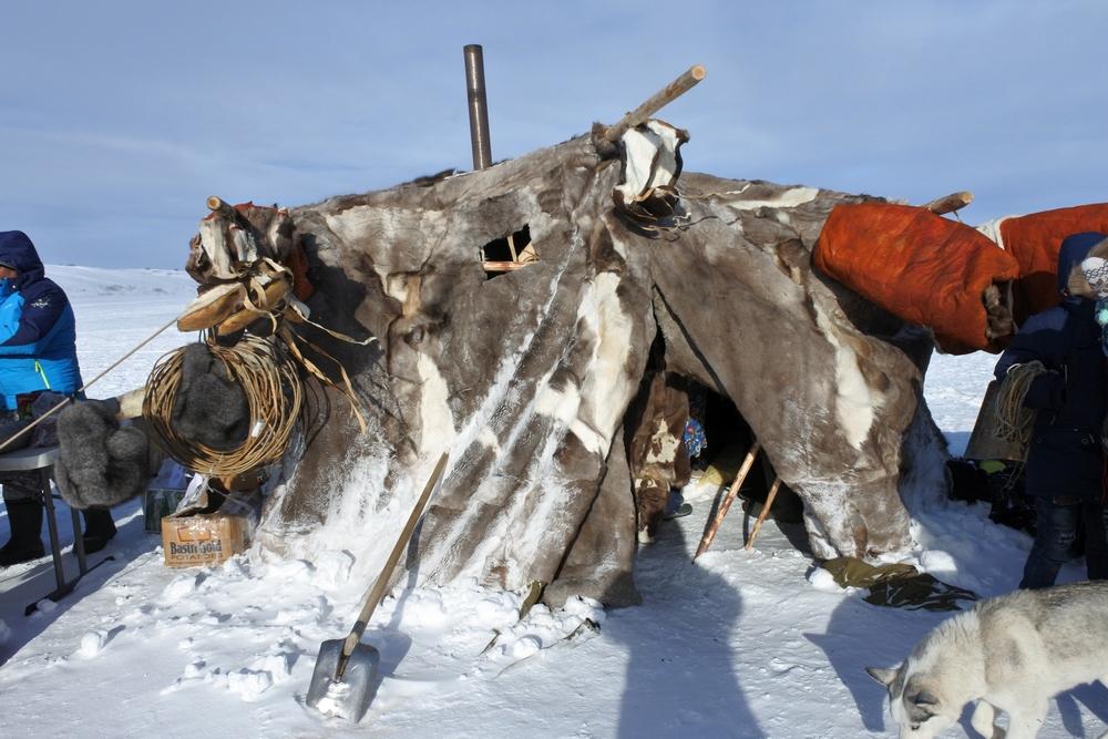 Сколько стоит современное жилище чукотского оленевода?